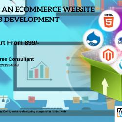 Website Designign company in rohini Delhi