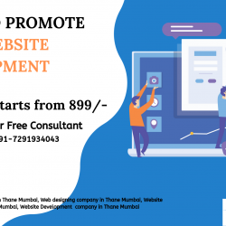 Promote Your Website Development
