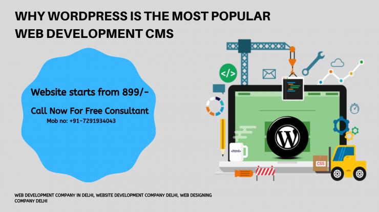 Web development company in delhi