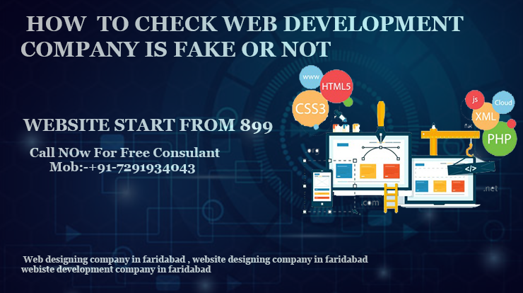 Web Development Company In Faridabad