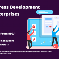 Is WordPress Development Fulfill Enterprises Needs