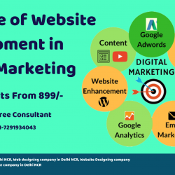 The Role of Website Development in Digital Marketing